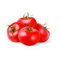 无公害有机番茄盆栽蔬菜