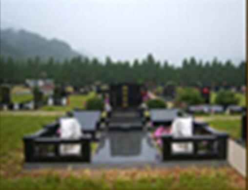 大型家族墓地图片