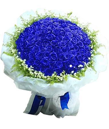 蓝色妖姬团购 北京蓝色妖姬 朝阳蓝色妖姬团购价格