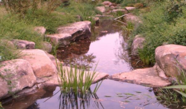 自然石水系驳岸